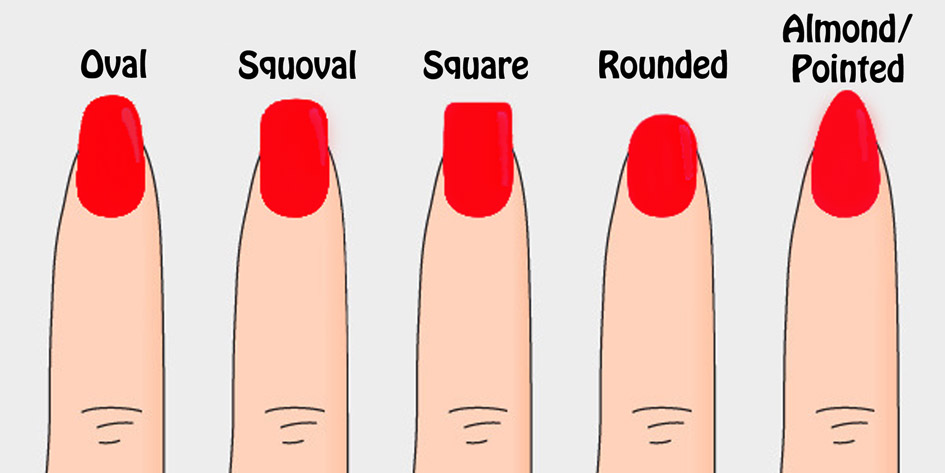 "... shape"", slightly tapering from the nail bed to the tip of the nail"